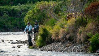 fishermen-bear-Kennedy-News.jpg