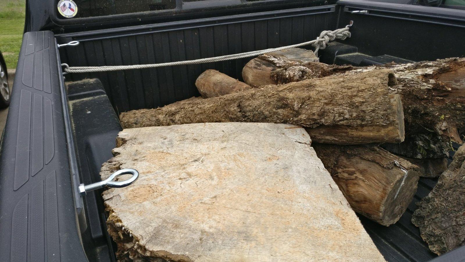 Pin Oak and Pecan 1.jpg
