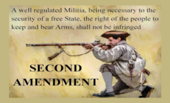 2nd Amendment Text - Rifleman-Horizontal-Bolt.png