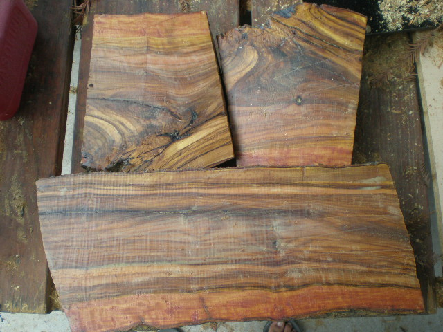 Found Wood - Olive